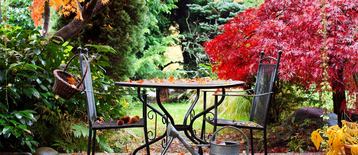 Herbst auf dem balkon tipps tricks beautypunk - Krautergarten auf dem balkon ...
