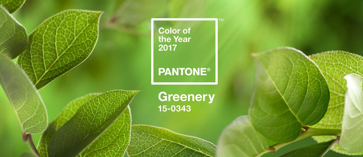 Farbe Des Jahres 2017: PANTONE 15-0343 Greenery