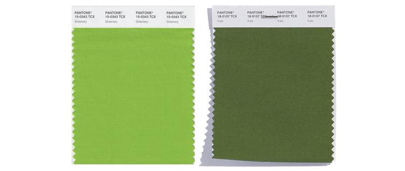 Trendfarben Greenery und Kale