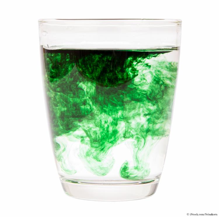 chlorophyll-im-glas