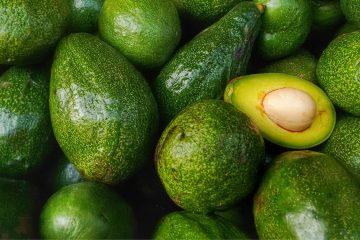 avocadokernpulver