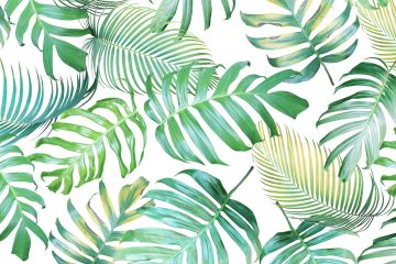 fototapete palmen