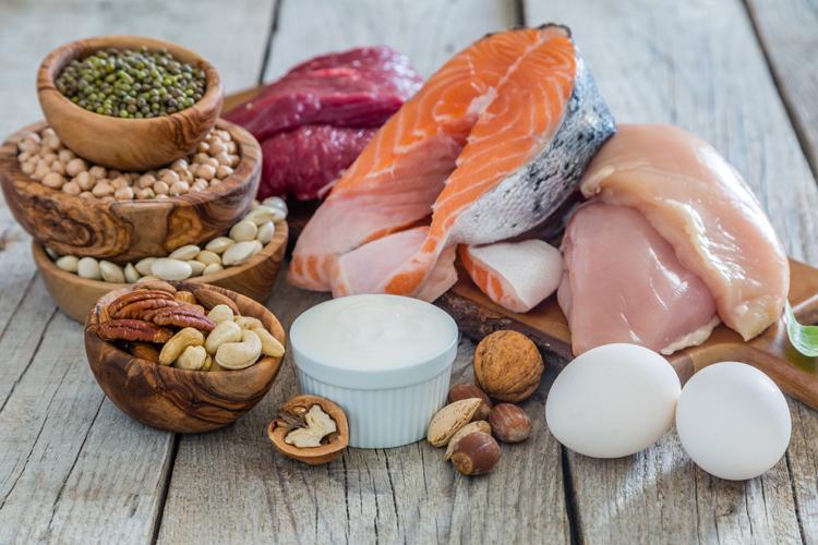 gute fette proteine
