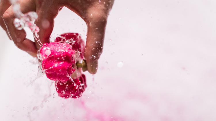 spinner lush