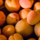 aprikosen hautpflege oel