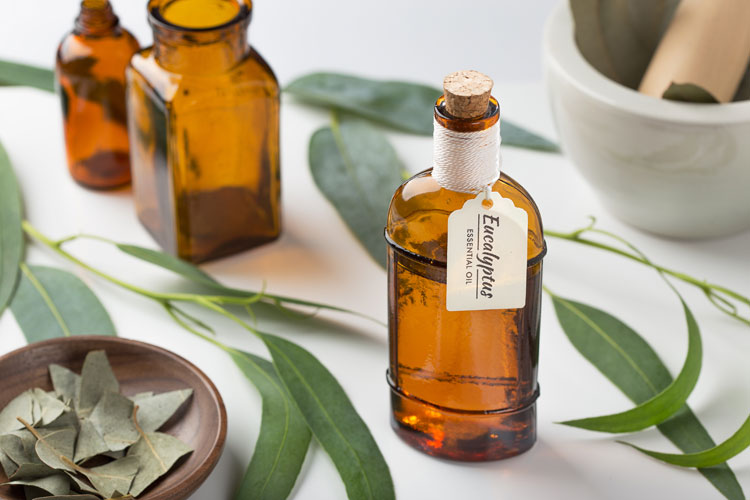 fläschen mit eukalyptusöl und eukalyptusblätter auf einem tisch
