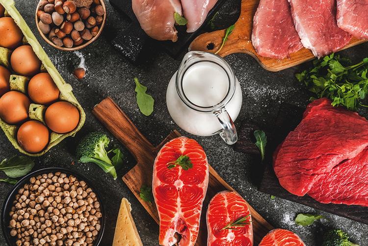 Proteinquellen wie Milch, Fleisch und Fisch
