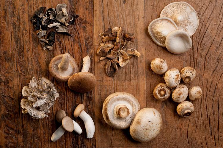 verschiedene essbare pilze auf einem holztisch