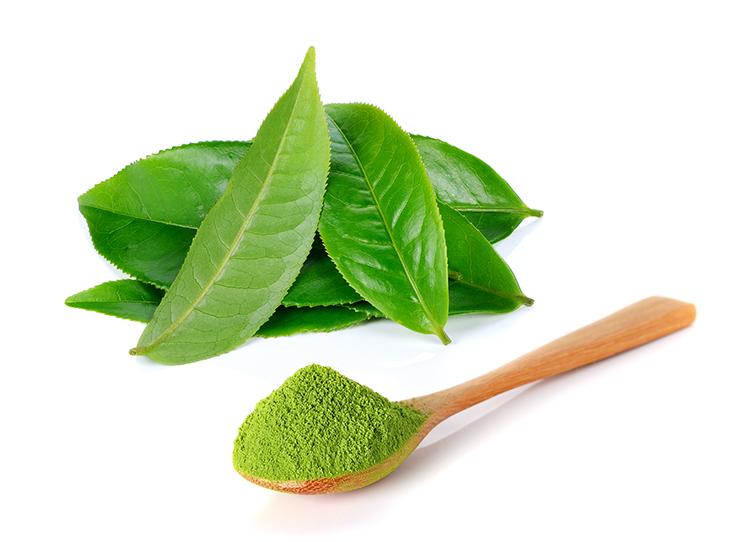 grünteeblätter und pulver