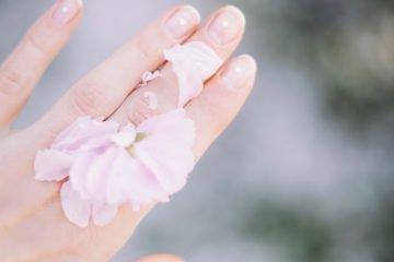 Hand auf der Rosenblätter liegen