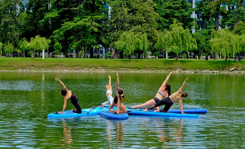 menschen die yoga auf dem surfbrett machen