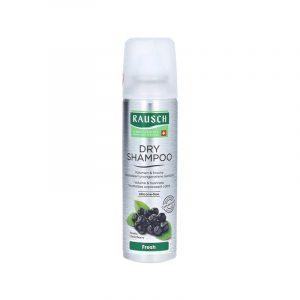 produktbild trockenshampoo von rausch
