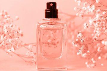 parfum flakon auf rose tisch stehend