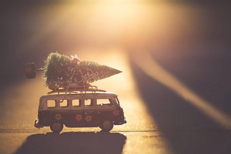 Bulli mit Weihnachtsbaum